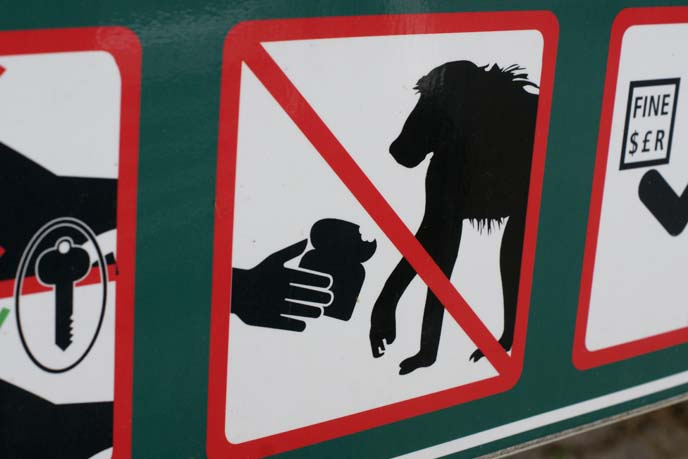 don't feed monkeys sign