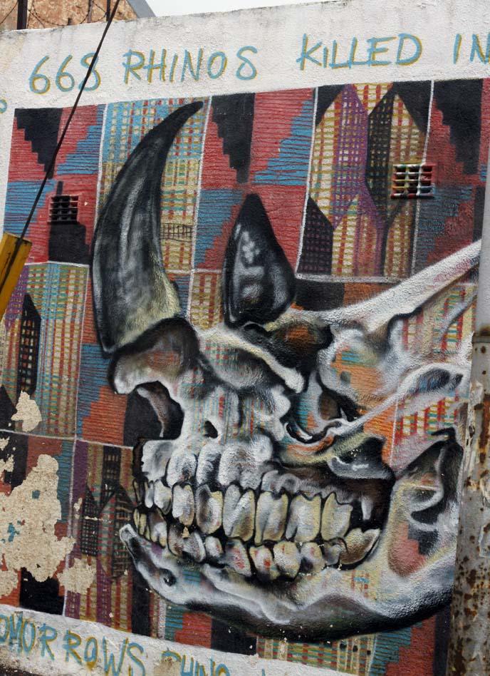 rhinos anti poaching mural