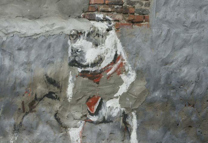 dog spraypaint art, cape town