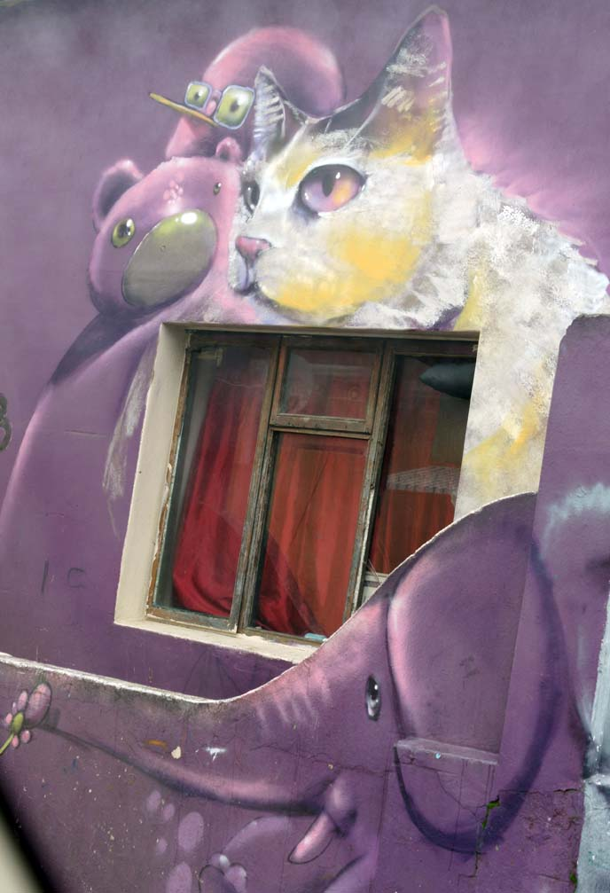 cern new york artist, cape town cat house