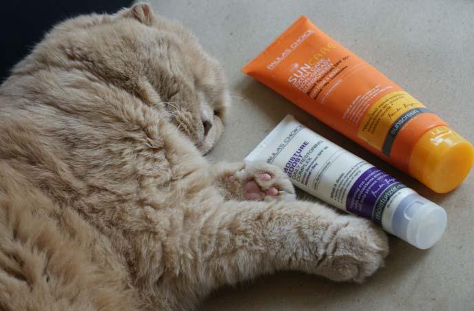 paula's choice sunscreen, beauty products