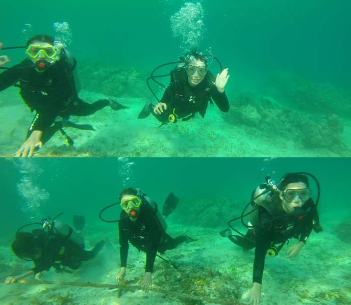 miss scuba diving