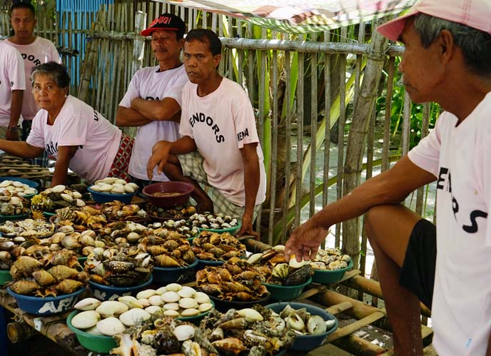 caohagan island seafood