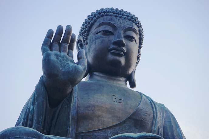 hong kong buddha tour