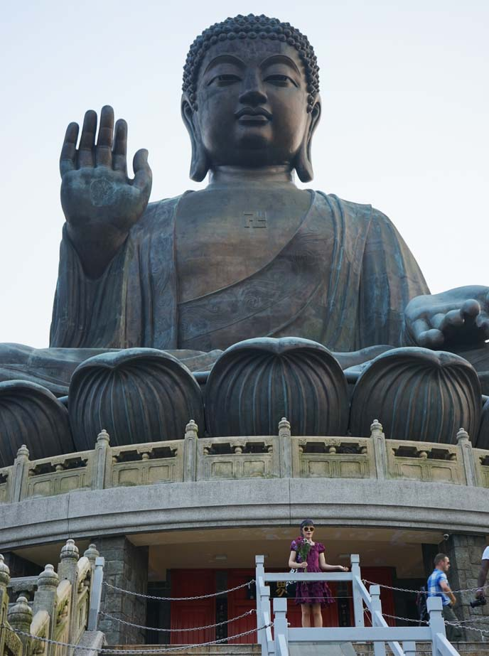 hong kong big buddha statue
