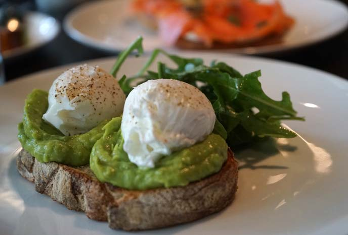 avocado toast trend