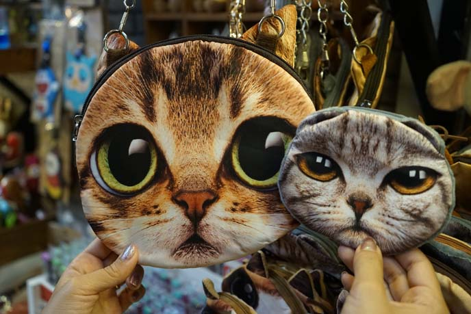 cute scottish fold cat purse