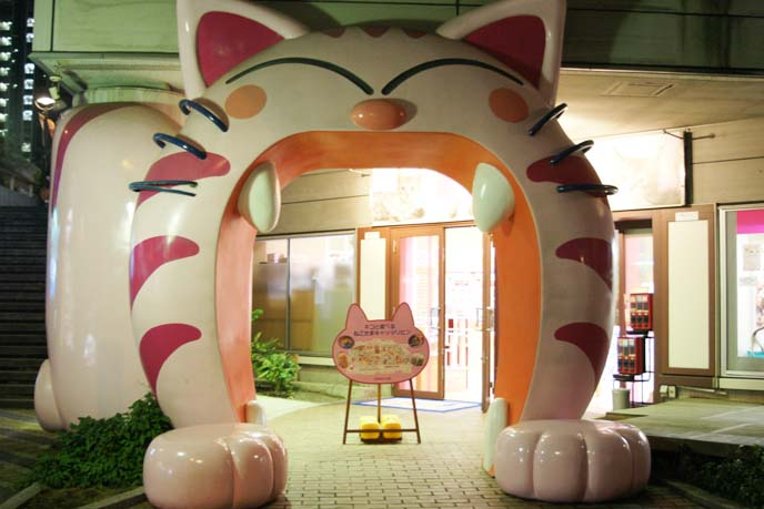 big cat yawning gate japan