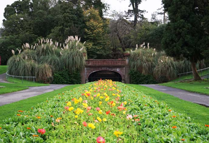 Golden Gate Park, San Francisco, California
