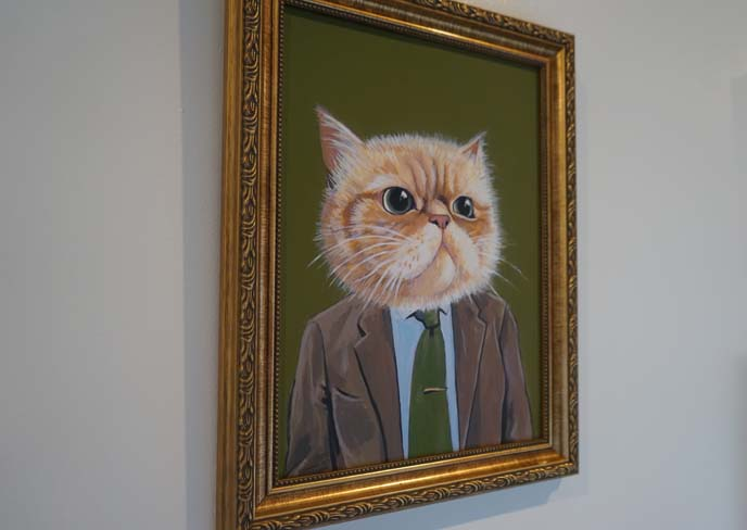 funny cat in suit portrait