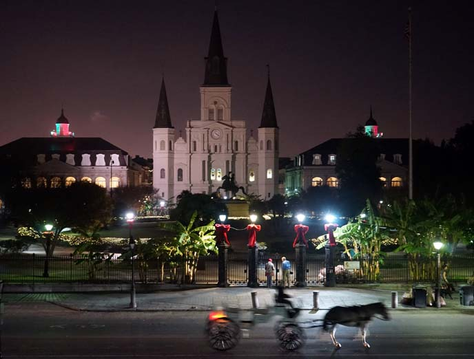 st louis cathedral nighttime