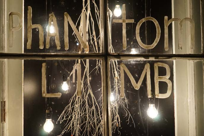 phantom limb, chris Roberts-Antieau