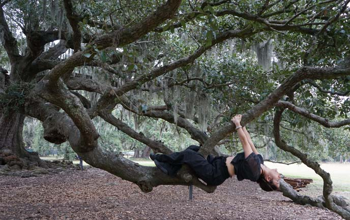 girl yoga on tree branches