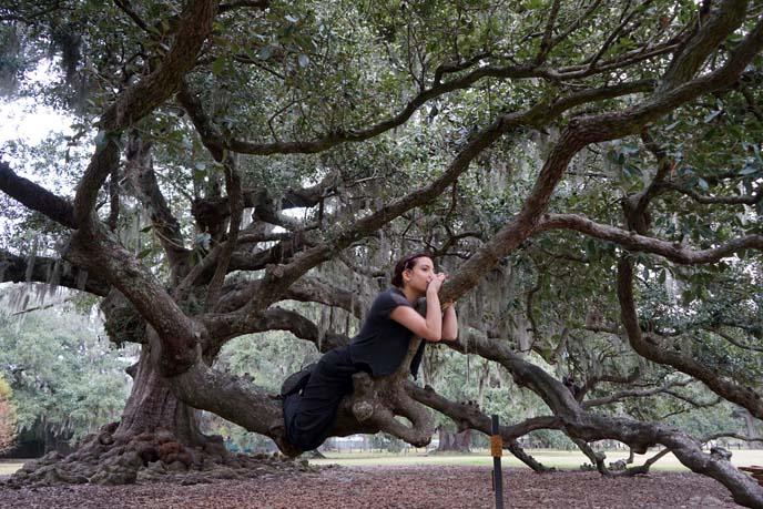 hanging tree girl
