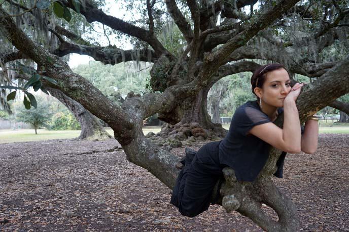 sleeping girl in tree