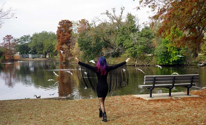 audubon park duck pond