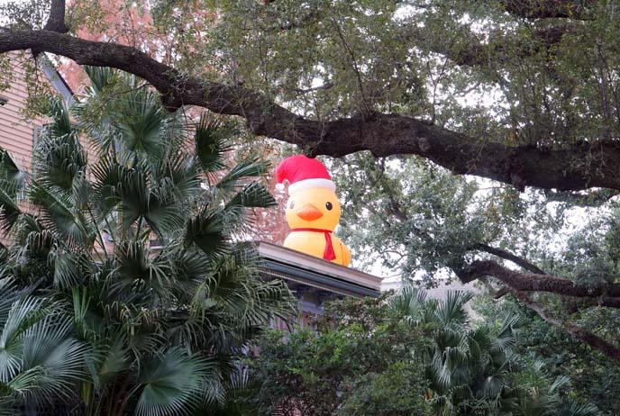 santa rubber ducky
