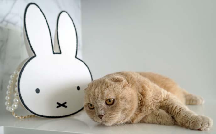 miffy rabbit purse handbag