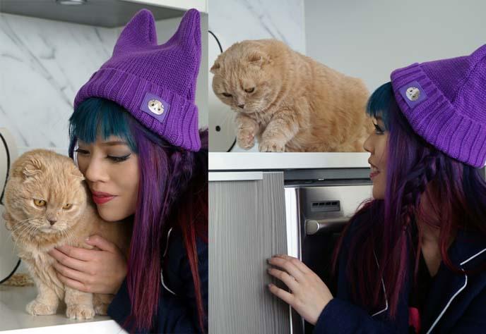 eat your kimchi meemersworth hat