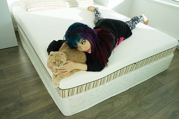 essentia classic 8 queen mattress