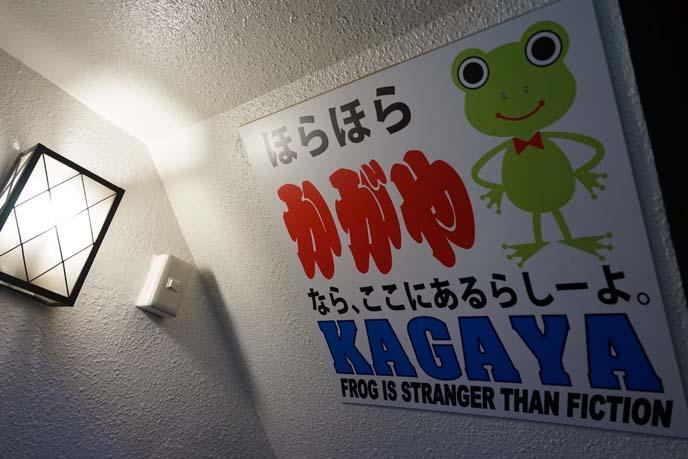 kagaya izakaya, frog costume