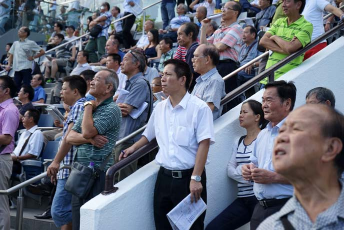 hong kong horse race spectators