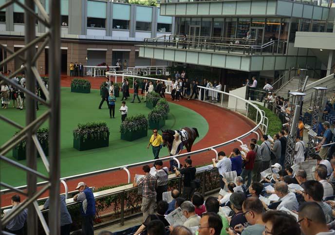 hong kong horse races betting