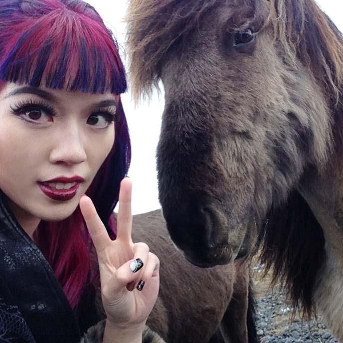 iceland horse selfie, icelandic horses