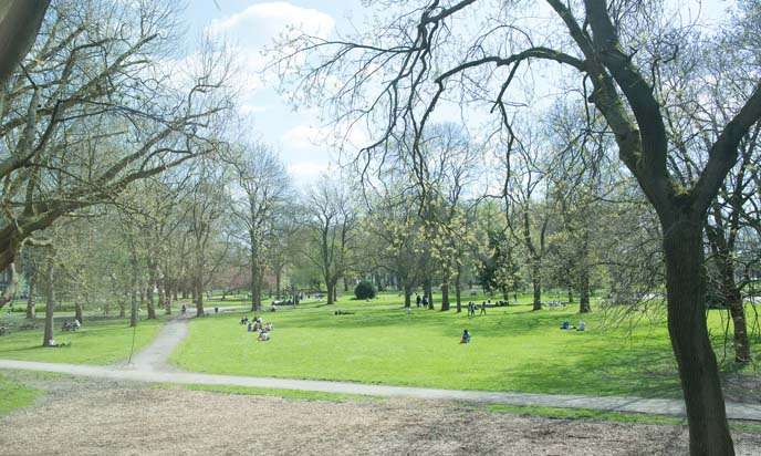 whitworth park manchester