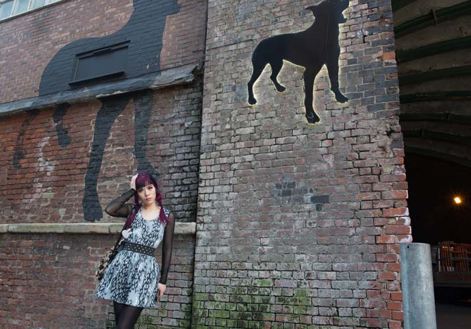 Black Dog Ballroom new wakefield Manchester