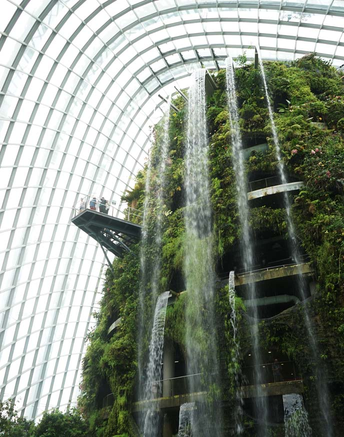 singapore cloud forest waterfall