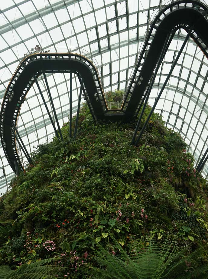 gardens by the bay, indoor garden