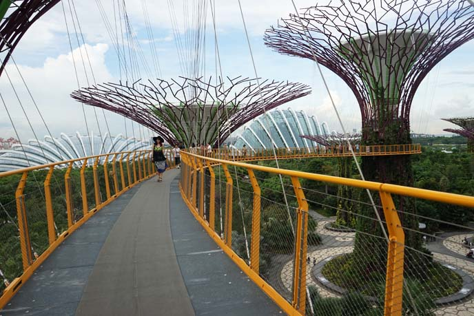 singapore vertical gardens, super trees