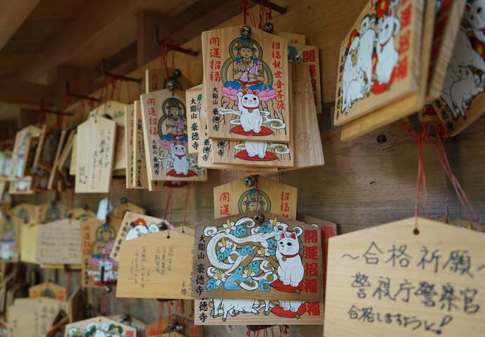 buddhist worship cat ema boards