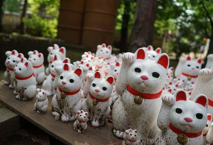 豪徳寺 cats