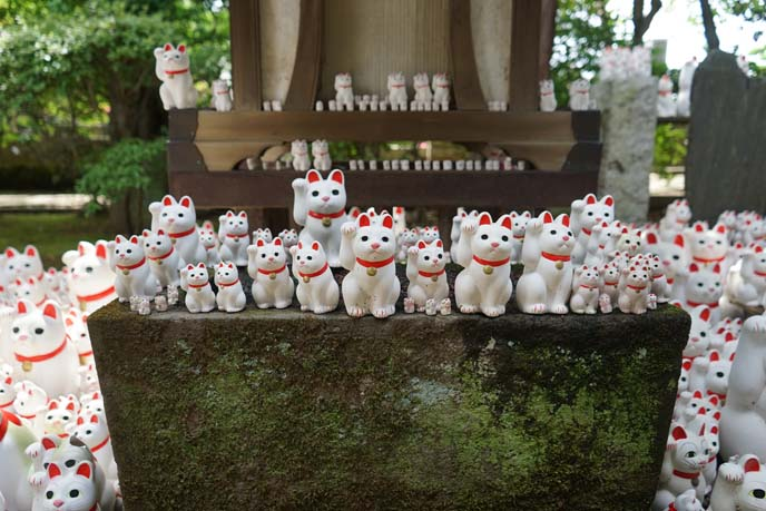 lucky cat statues temple
