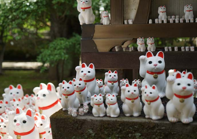 birthplace of maneki nekos