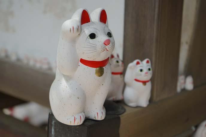 cats Gotokuji Temple, Setagaya