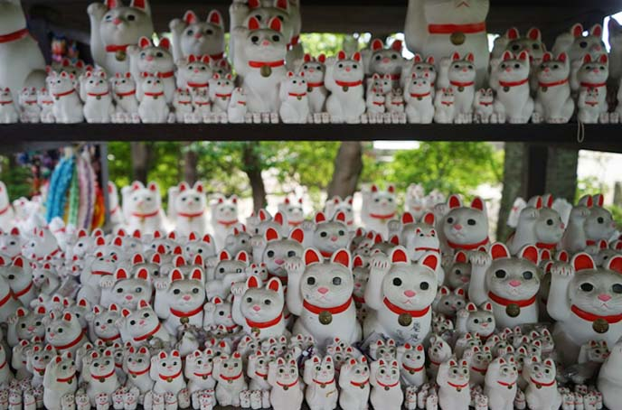thousands maneki neko statues