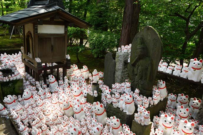 gotokuji tokyo temple cats