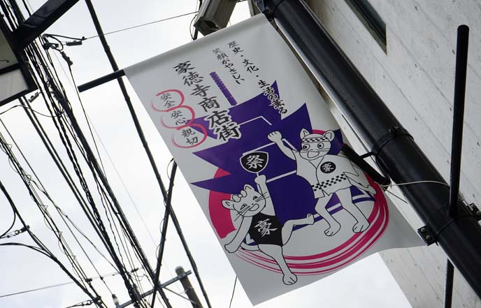 cat street signs, tokyo