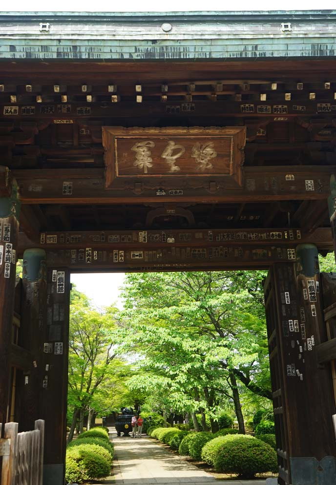 gate entrance gotokuji shrine