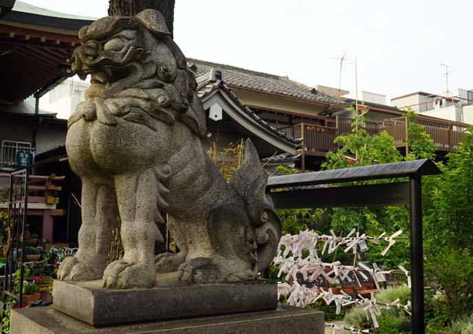 lion statue asakusa