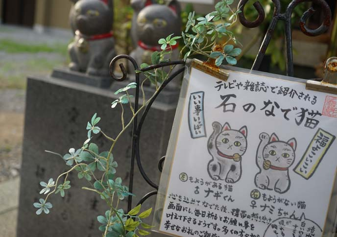 maneki neko drawings, illustrations