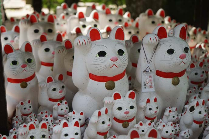 Maneki Neko Beckoning Cat Temple