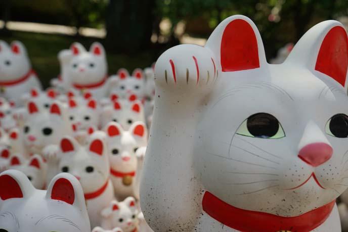 猫観音を祀る招猫殿