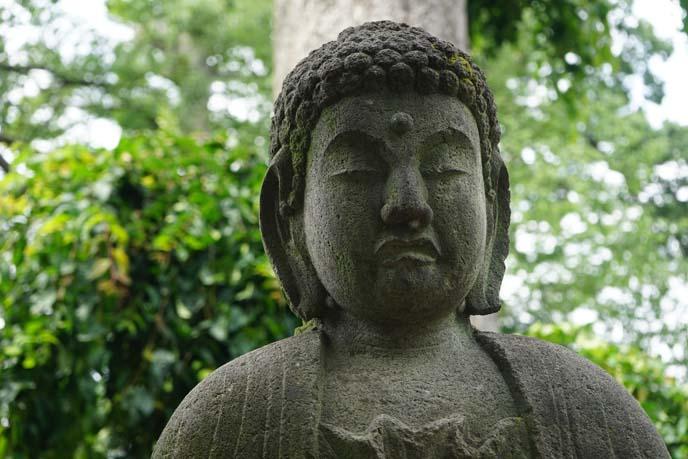 buddha statue gotokuji