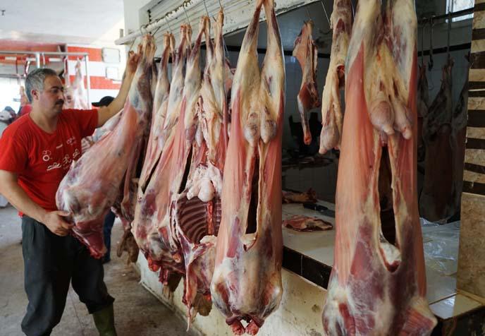 hanging racks lamb morocco