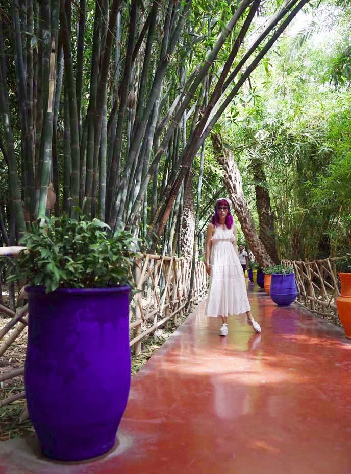 marrakesh garden, maroc jardin majorelle