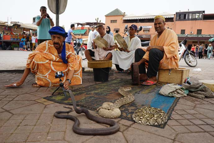 snake charmers square of dead morocco